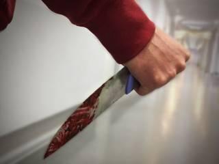 Под Киевом подросток устроил кровавую резню ‒ трое в реанимации
