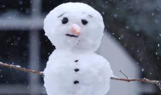 Ученые рассказали об аномальной жаре в Европе прошедшей зимой