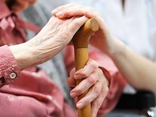 На Закарпатье православная молодежь организовала доставку продуктов и лекарств для пожилых людей