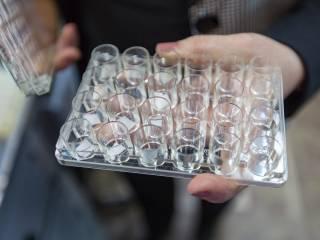 Украинских ученых, создавших тест на коронавирус, отправили в отпуск за свой счет