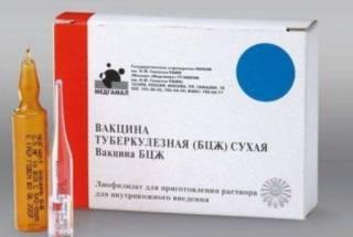 Противотуберкулезная прививка защитит от коронавируса. Или не защитит