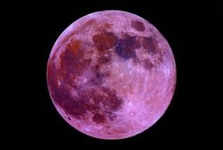 Стало известно, когда украинцы смогут увидеть розовую Луну