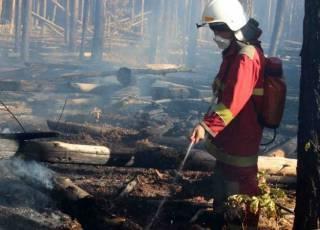 Пожарные тушат сразу два возгорания в Чернобыльской зоне