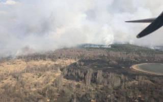В Житомирской области несколько дней горит лес