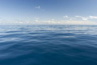 Ученые рассказали о первых жертвах грядущей климатической катастрофы