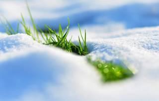 Синоптики предупредили украинцев о надвигающемся снегопаде