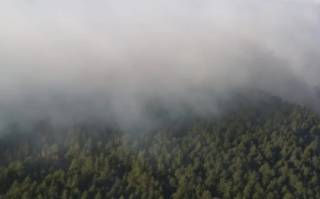 Оказалось, что пожар в Чернобыльской зоне потушен не до конца. В Киеве ощущается запах гари