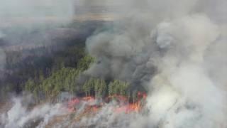 Спасатели уверяют, что в Чернобыльской зоне никакого пожара нет