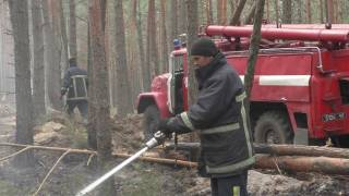 Пожары в Житомирской области: что известно на 22 апреля 2020 года