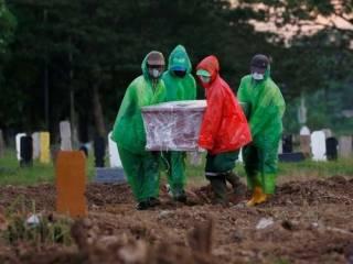Эпидемия COVID-19 в мире и Украине: данные на вечер 25 апреля 2020