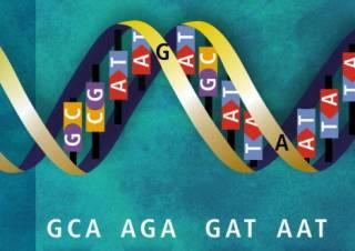 Билл Гейтс и дочь Путина решили вмешаться в генетический код человека