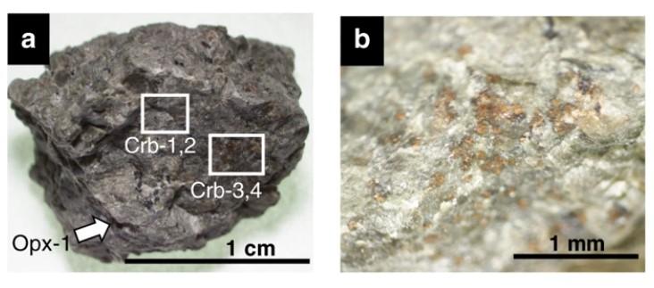 Фрагменты марсианского метеорита Allan Hills и зерна минералов, в которых обнаружена азотсодержащая органика