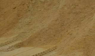В Харьковской области в песчаном карьере погибла крошечная девочка