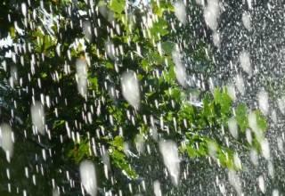Синоптики поведали, когда в Украину вновь вернутся дожди