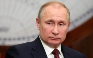 «Чайный гриб и печень трески»: стало известно, чем питается Путин на карантине