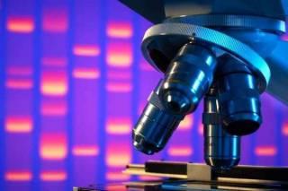 Ученые рассказали о чудо-диете, которая может победить рак