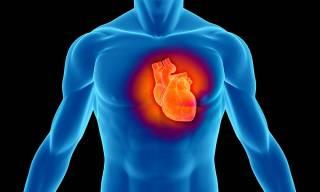 Немецкий профессор назвал главные признаки инфаркта и посоветовал пить аспирин