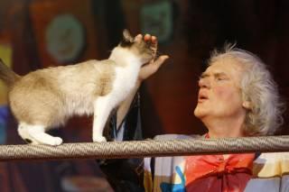 Куклачев заявил, что «коронавирус у кошек – давно известная болезнь»