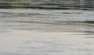 Из-за проливных дождей в Украине начались наводнения