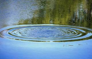 В Сумской области дети утонули в пруду