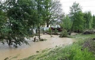 Мощный ливень на Закарпатье затопил село и разрушил четыре моста
