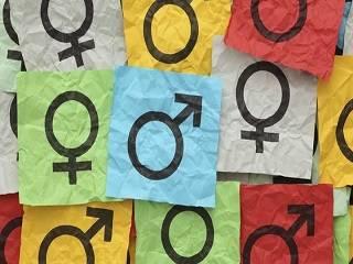 Совет Церквей призвал парламент отклонить законопроекты по внедрению гендерной идеологии