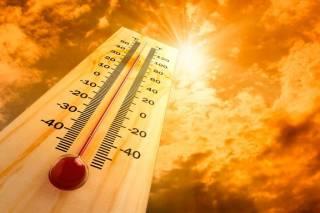 Ученые заявили, что на Земле началась глобальная «оттепель»