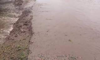Жителей Одесской области пугают наводнениями из-за сильных дождей