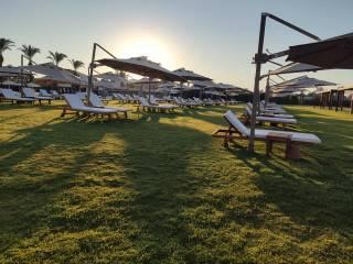 Пустые пляжи и социальная дистанция для детей: Турция начала принимать туристов после карантина