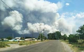 На Луганщине крупный лесной пожар подошел к поселку. Людей эвакуируют
