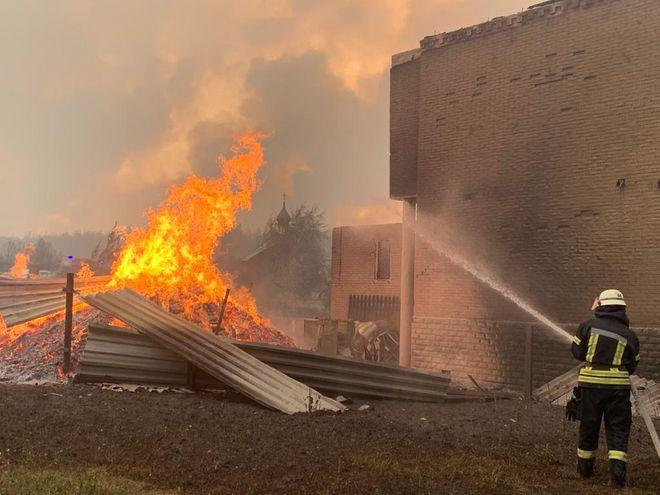 Жертвами лесных пожаров в Луганской области стали четыре человека