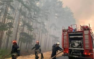 Боевики мешают авиации тушить лесные пожары под Северодонецком