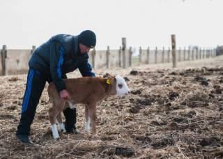 Мелким сельским хозяевам готовят полный капитализдец