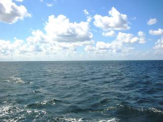 Вода в Черном и Азовском морях аномально прогрелась