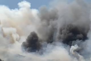 Появилось видео мощного лесного пожара в Греции