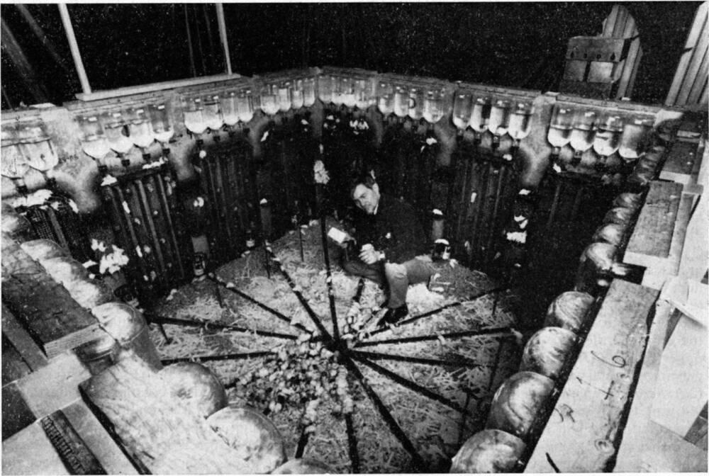 Эксперимент «Вселенная-25»