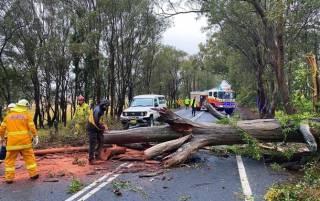 Появилось видео последствий жуткого шторма в Австралии