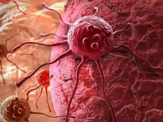Ученые рапортовали о чудо-средстве для борьбы с раком