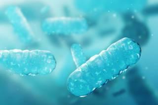 Можно отправлять в космос: американские ученые воскресили группу бактерий, которым более 100 млн лет