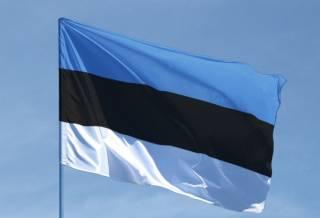 Эстония экстренно закрыла воздушную границу для украинцев
