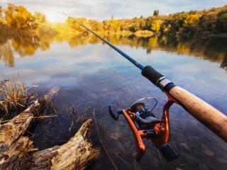 Попавшаяся на крючок огромная рыбина утопила рыбака на Закарпатье
