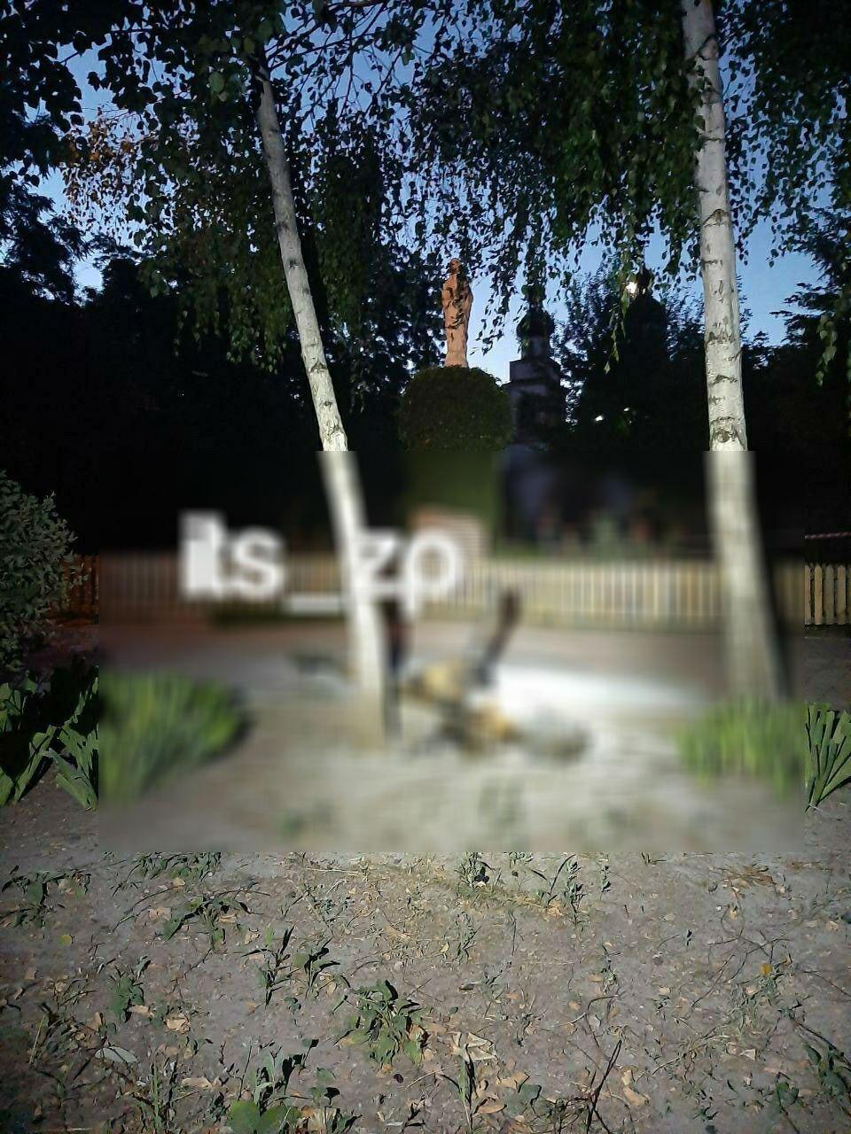 Сгоревший труп девушки в Запорожье