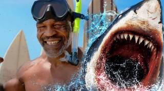 Тайсон «нокаутировал» белую акулу на Багамах
