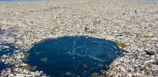 В Тихом океане сформировался мусорный остров, размеры которого уже превышают площадь Украины