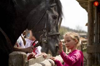 Посетителей «Парка Киевская Русь» ждет сюрприз