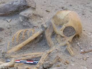 Археологи раскопали в Египте странное кладбище домашних животных