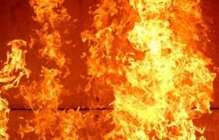Жуткий пожар в Черниговской области: среди погибших – ребенок