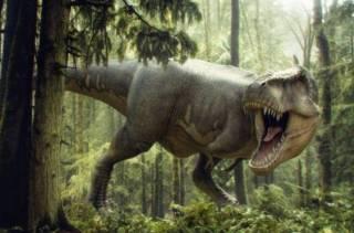 Стало известно, каким был вес динозавров