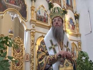 Запорожский митрополит УПЦ рассказал о том, что делает верующих христианами