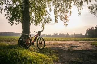 Стало известно, чем так полезная езда на велосипеде